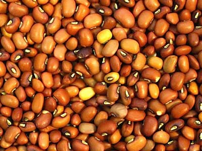 Caloona Cowpeas - Product Photo